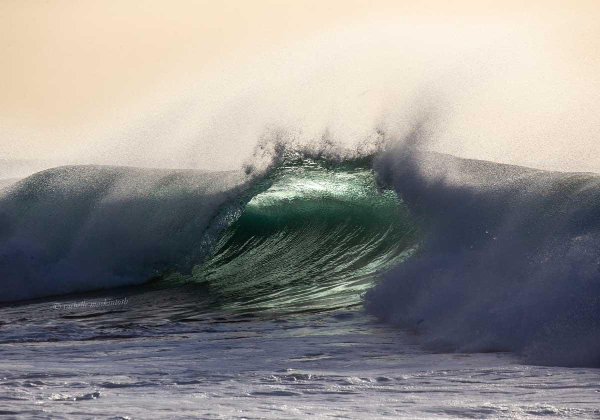 wave maroubra beach surfing