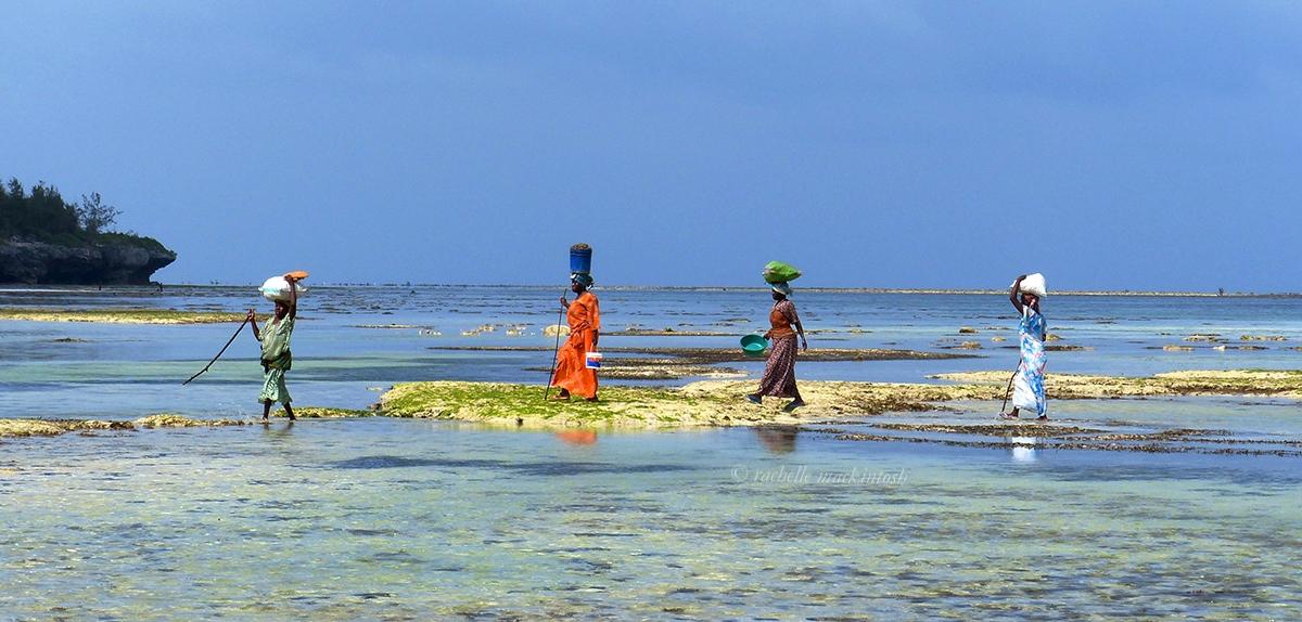 tanzania zanzibar women beach