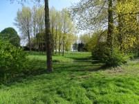 Entre deux zones boisées du Hameau Favarge