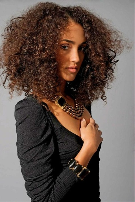 curly hairstyles afro hair