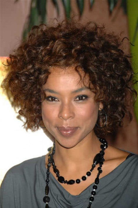 Short Hairstyles Curly Hair