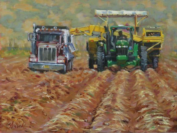 Potato Harvest by Vicki Shuck