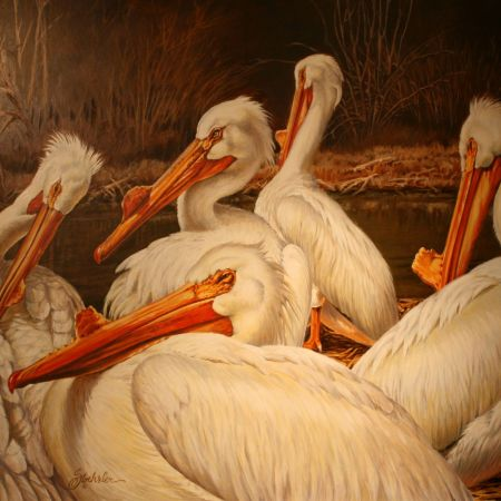 A Wondrous Bird is a Pelican by Pam Stoehsler