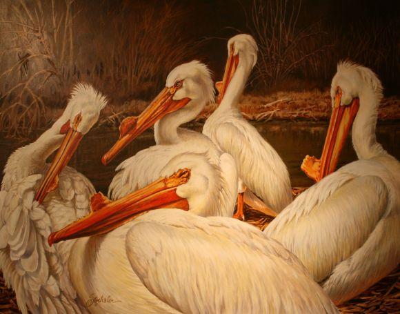 A Wondrous Bird is a Pelican by Pam Stoehsler