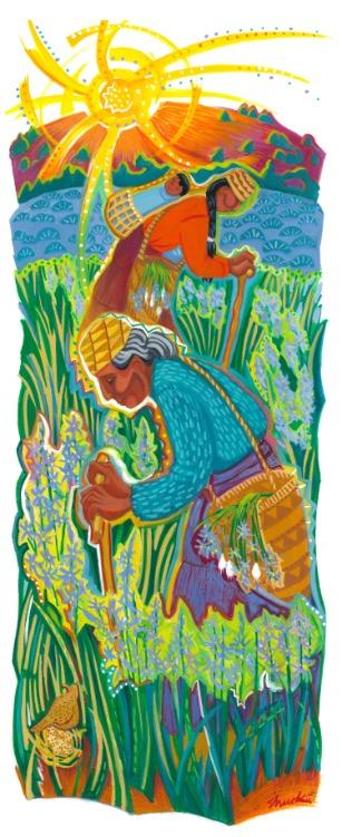 Digging Camas Roots by Vicki Shuck