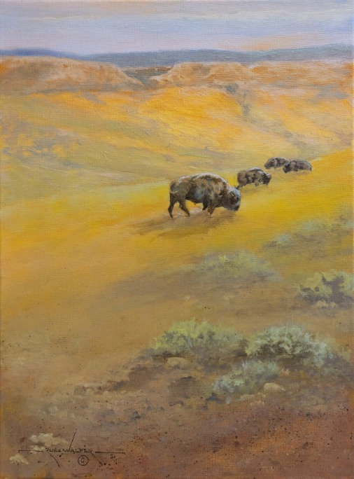 Short Grass Prairie by Russ Walker