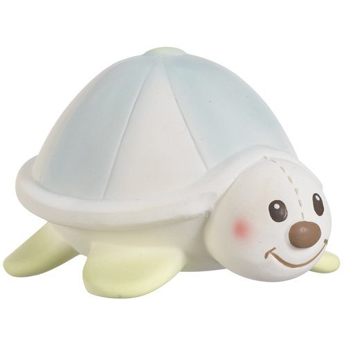 5_Margot the Turtle