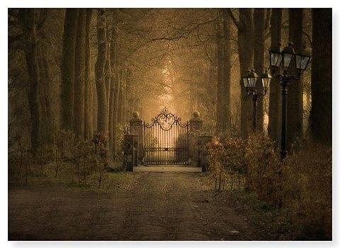 Avenue Castle Entrance Dream Dreamland Drive