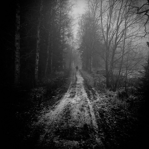 Cute Anime Couple Wallpaper Backgrounds Black And White Forest Monochrome Path Solitude