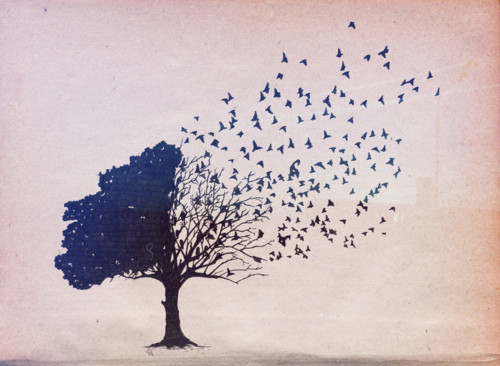 arbre, bird, birds, illustration, illustrations, imagination