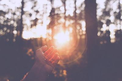 Hasil gambar untuk sunrise forest girl tumblr