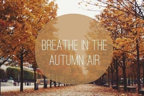autumn, fall, sayings, quotes, air