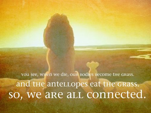 Lion King Quotes Fav Images Amazing Pictures