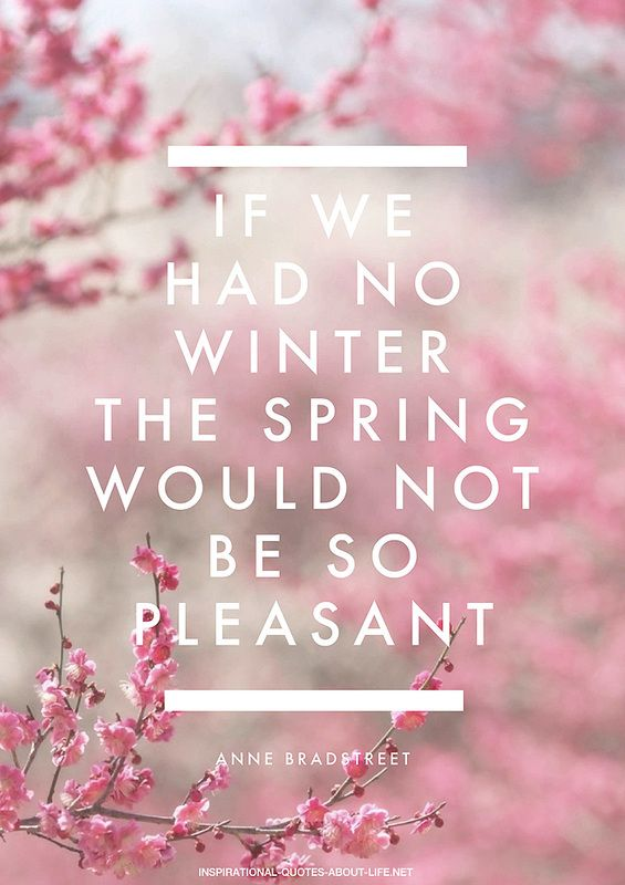 Spring Quotes Fav Images Amazing Pictures