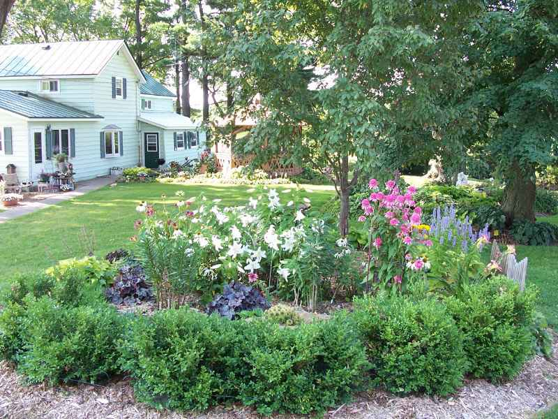 Favorite perennials for sun and shade perennial bed mightylinksfo