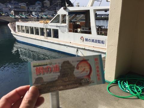 ジブリのポニョを思い起こす鯛の群れ。青い海と心地よい風に癒される「鯛の浦」。千葉外房小湊の旅。