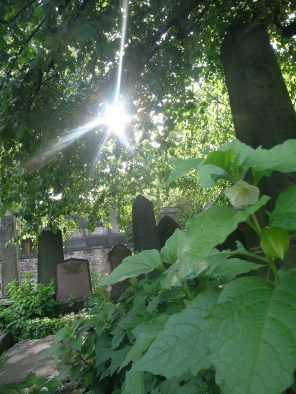 st-cuthberts-cemetery-edinburgh-west-end-scotland_4959888362_o