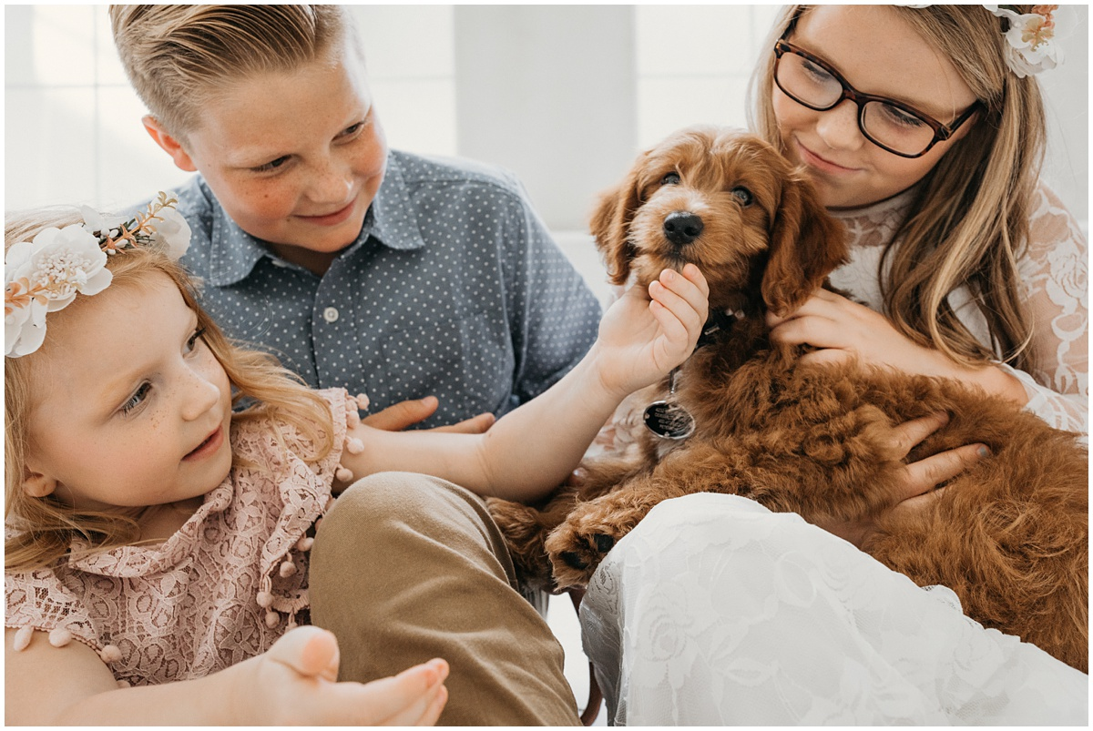two little girls and a little boy hug their browny red Labradoodle puppy during a family photo shoot with Fawn & Fellow photography