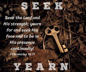 Seek & Yearn