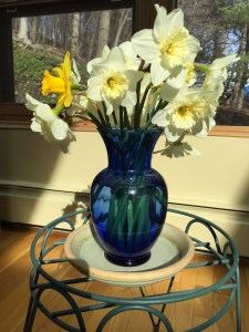 Post Storm Daffodil Bouquet