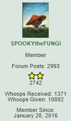 Spooky.jpg