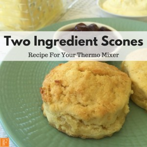 Two Ingredient Scones
