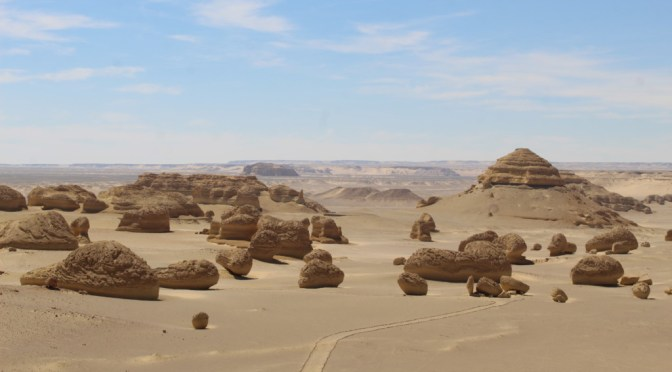 The Valley of the Whales ( Wadi Hitan )
