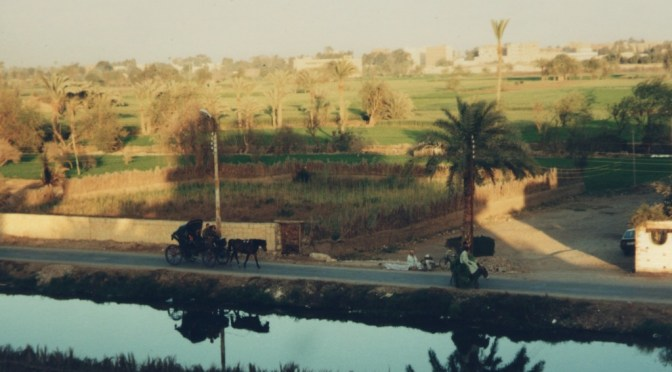Random photos of Fayoum By Niksin