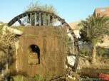 Largest Water Wheel in Egypt (12)