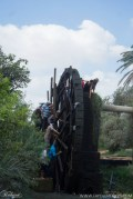 Largest Water Wheel in Egypt (7)