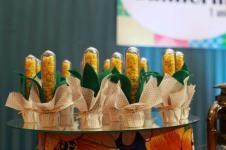 Doces-aniversário-tema-Fazendinha-Country-São-João-42 Idéias para festa Infantil com tema Fazendinha para meninos e meninas