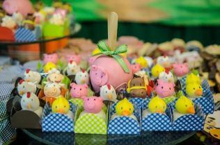 Doces-aniversário-tema-Fazendinha-Country-São-João-51 Idéias para festa Infantil com tema Fazendinha para meninos e meninas