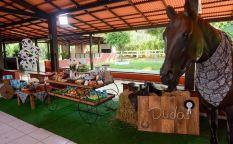 aniverssário-infantil-decoração-tema-festa-fazendinha-04 Idéias para festa Infantil com tema Fazendinha para meninos e meninas