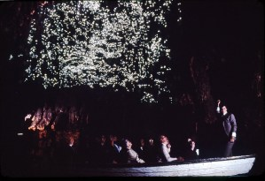 Conheça a Waitomo Glowworm Cave