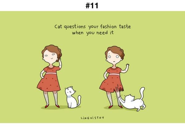 Manfaat Kucing 11