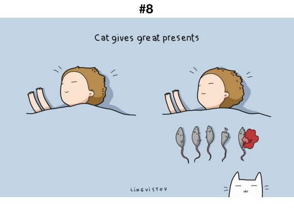 Manfaat Kucing 8