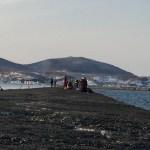 土曜日調査、小樽南防波堤クロガシラ。まだ早し!
