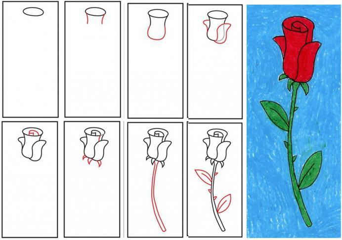как нарисовать открытку на день рождения маме или сделать год, эстонии эти
