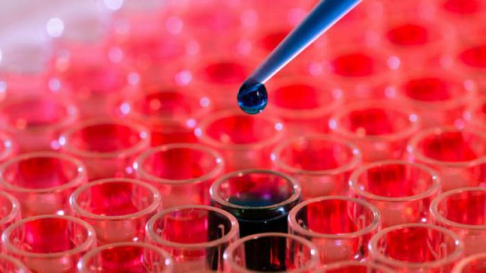 Повышенный кальций в крови: симптомы и лечение гиперкальциемии. Повышенный кальций общий и ионизированный