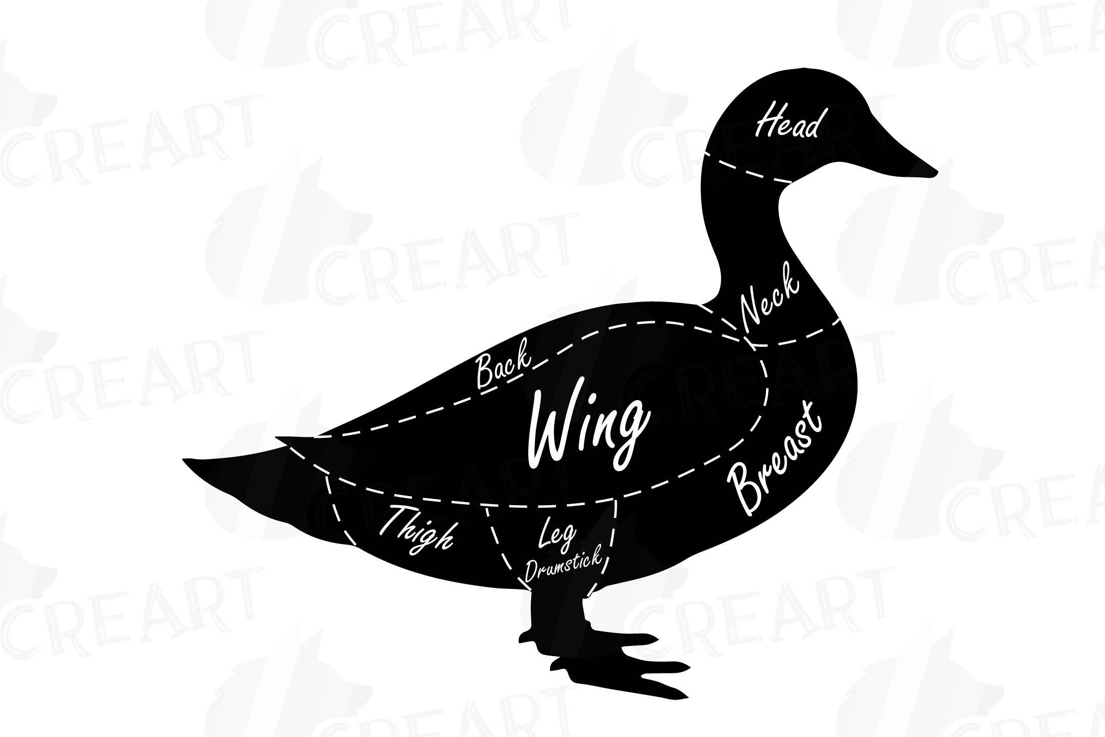 duck wing diagram 7 pin relay butcher clip art digital chart cuts example image 3