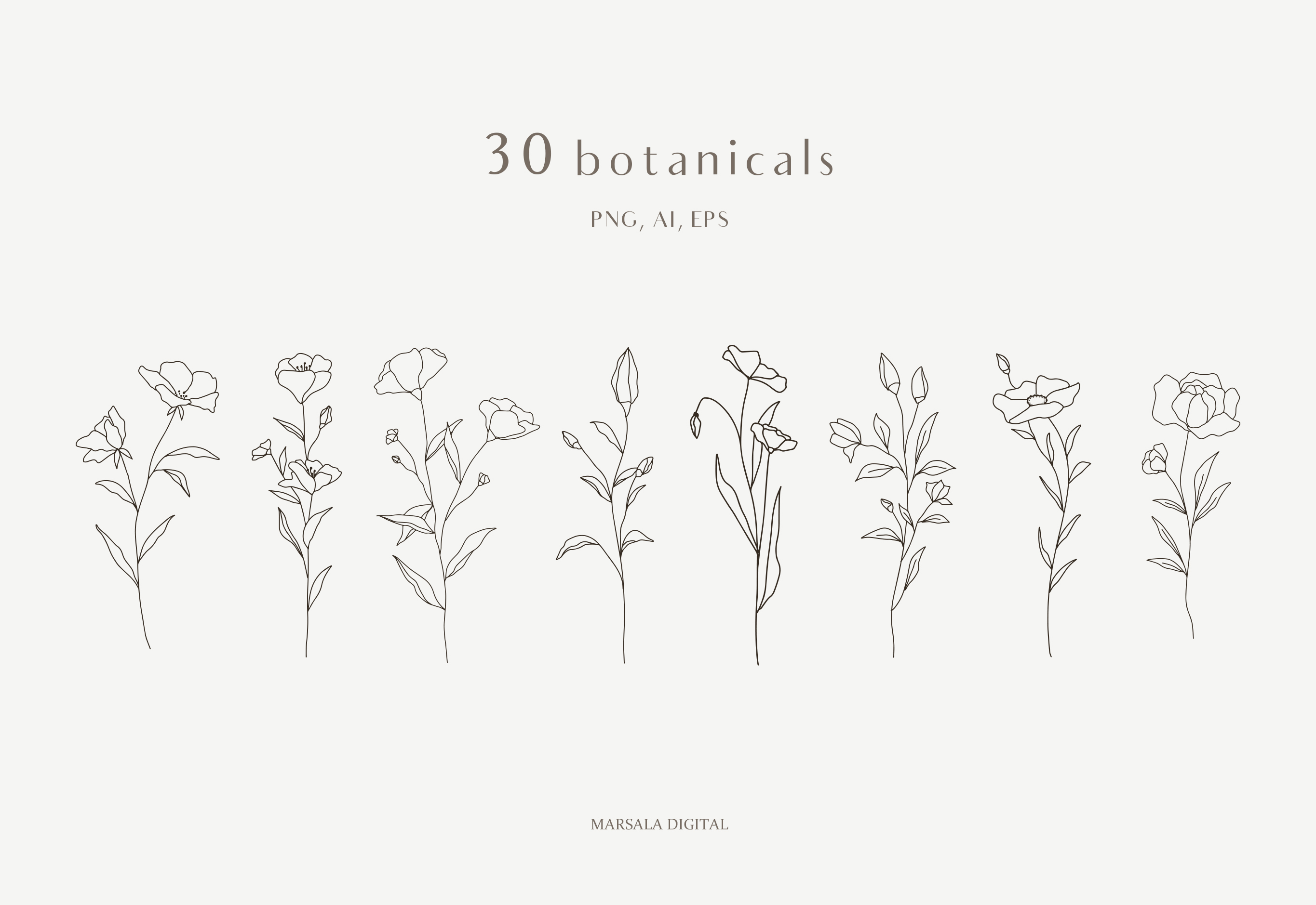 Botanical Line Art, Wildflowers Clipart, Leaves Clipart