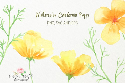 small resolution of  watercolor california poppy clipart png silhouette vector eps and svg