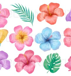 tropical flowers watercolor clipart example image 2 [ 1160 x 772 Pixel ]