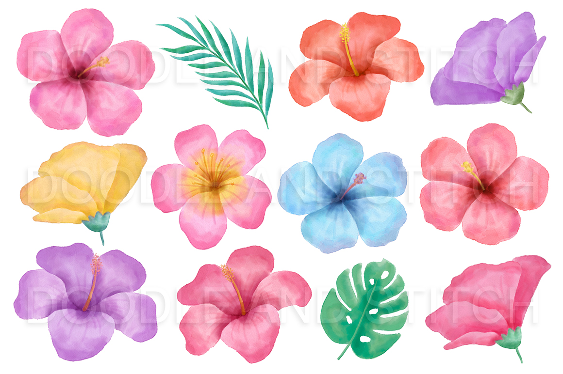 hight resolution of tropical flowers watercolor clipart example image 2
