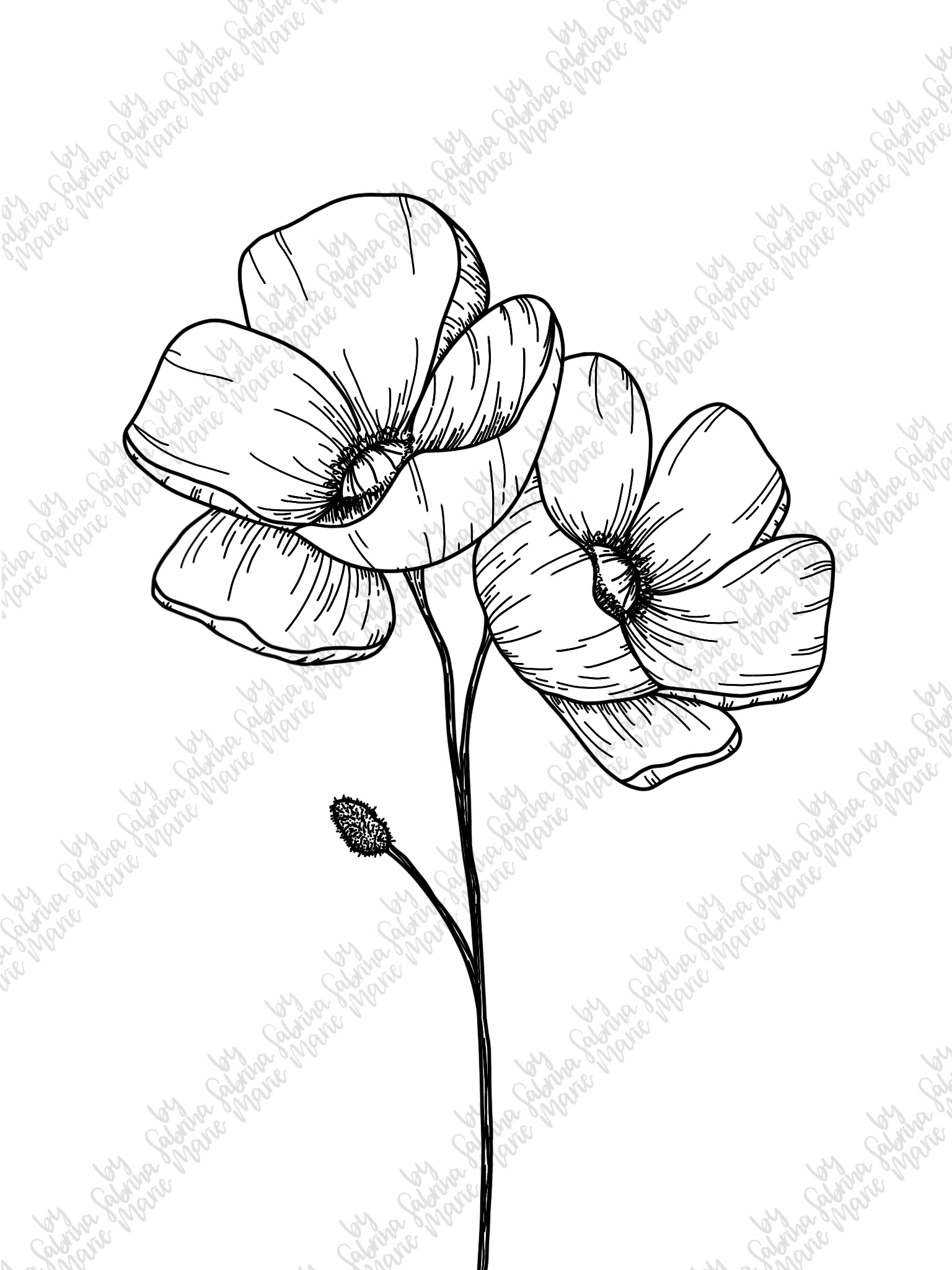 Poppies Handdrawn Flower Line Drawing SVG & PNG (175277