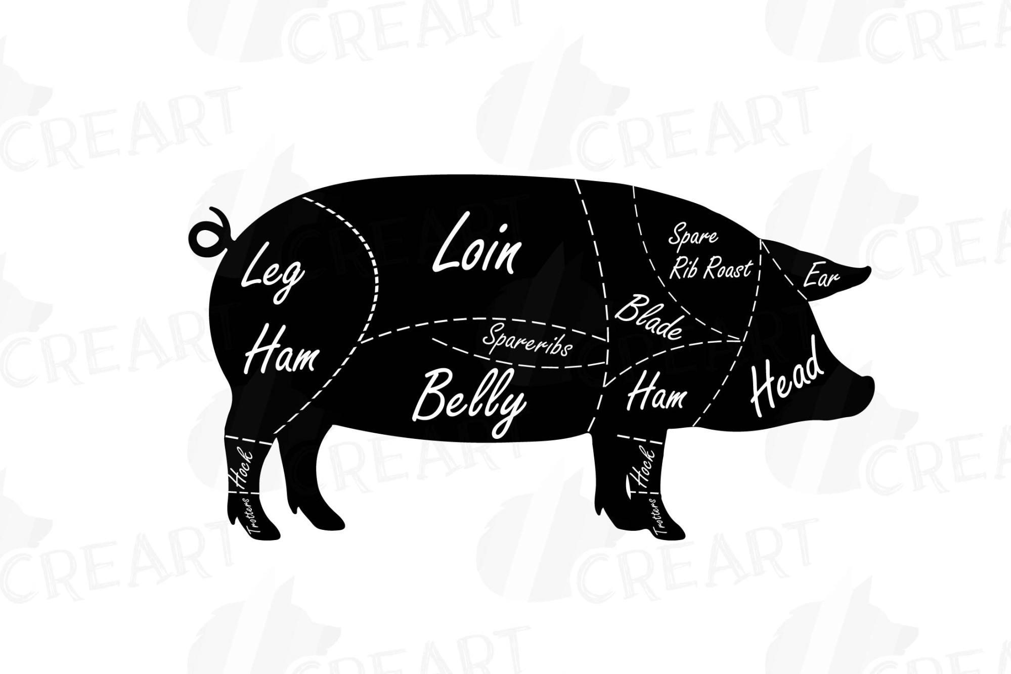 hight resolution of butcher diagram clip art digital pig chart pork cuts diagr example image 3
