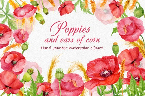 small resolution of poppies and ears of corn example image 1