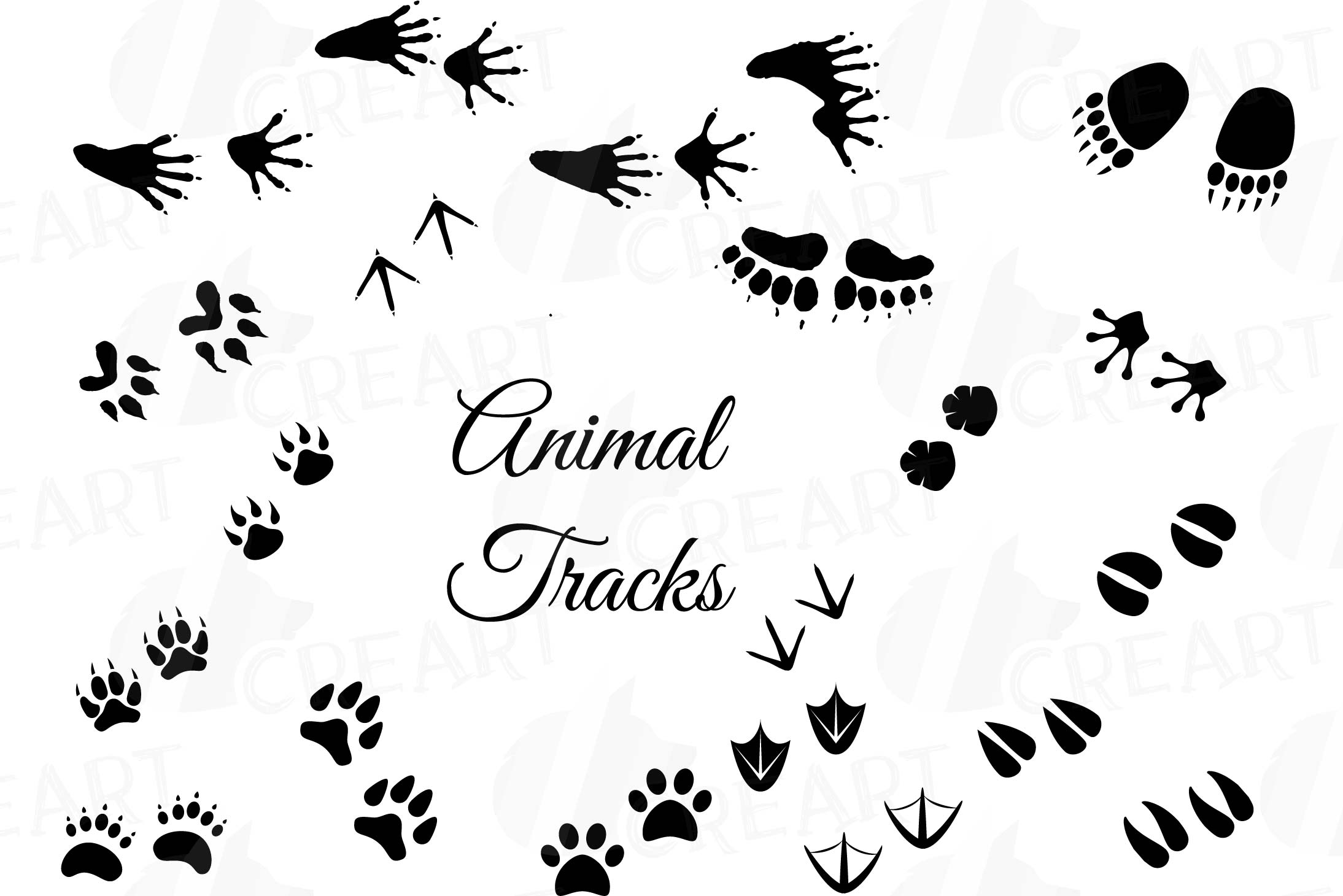 Animal Tracks, Woodland Animals footprints Clipart pack