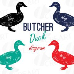 Duck Wing Diagram Volvo 850 Wiring 1996 Butcher Clip Art Digital Chart Cuts Example Image 1