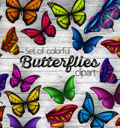 set of colorful butterflies clipart example image 1 [ 1200 x 800 Pixel ]
